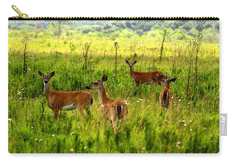 Whitetail Deer Carry-all Pouch featuring the photograph Whitetail Deer Family by Barbara Bowen