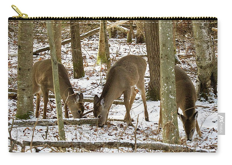 Wildlife Carry-all Pouch featuring the photograph Whitetail Does 6023 by Michael Peychich