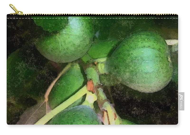 Fig Tree Carry-all Pouch featuring the digital art Who Gives A Fig by RC DeWinter