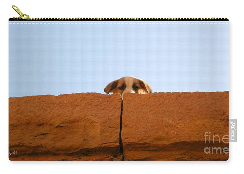 Animals Carry-all Pouch featuring the photograph Who Is Looking? by Mikhael van Aken