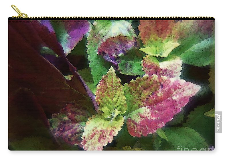 Coleus Carry-all Pouch featuring the painting Who Needs Flowers by RC DeWinter