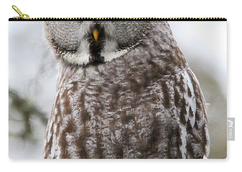 Great Grey Owl Carry-all Pouch featuring the photograph Who's Looking At Who? by Emma England