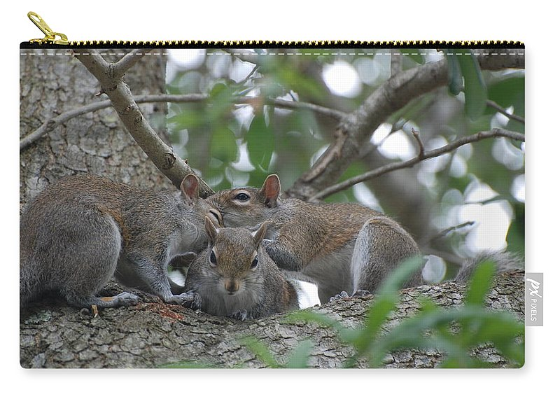 Squirrel Carry-all Pouch featuring the photograph Why Me by Rob Hans