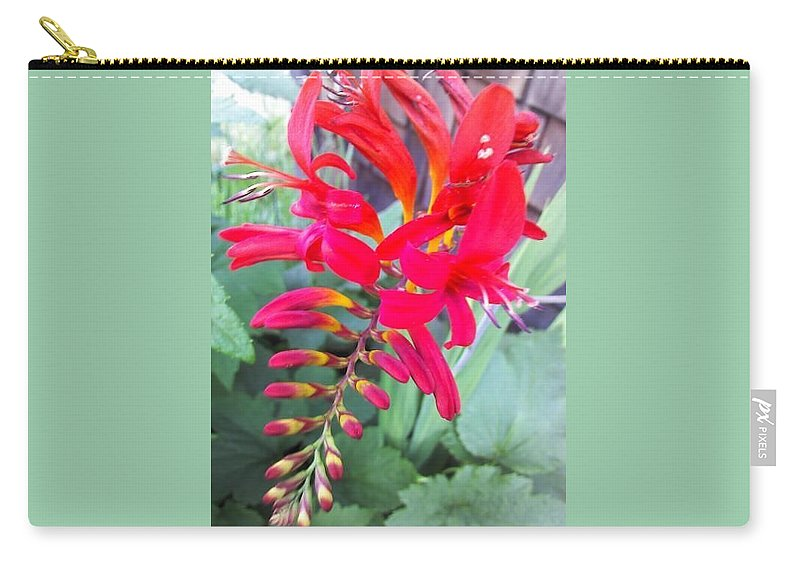 Dragon Flower Carry-all Pouch featuring the photograph Wild Flower by Chase Hoskins