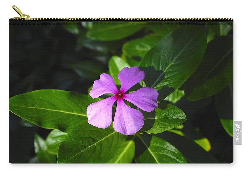 Beautiful Carry-all Pouch featuring the photograph Wild Flower by David Lee Thompson