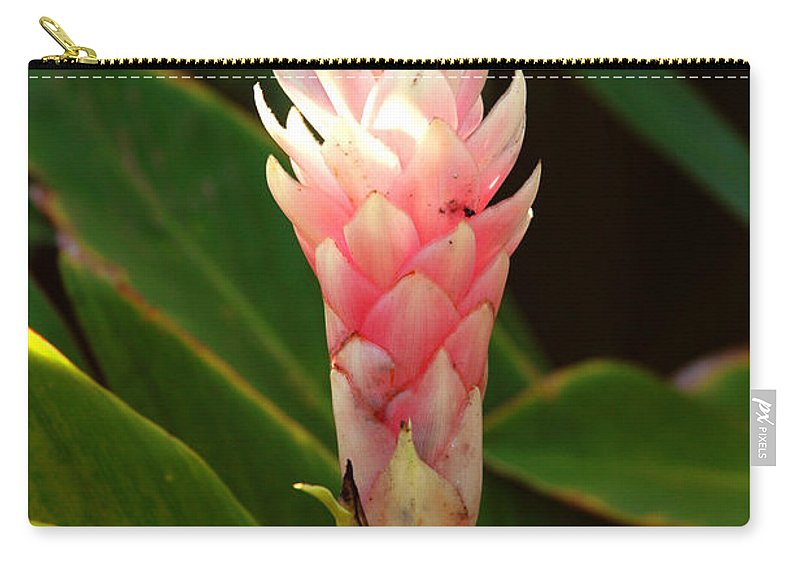 Wild Ginger Carry-all Pouch featuring the photograph Wild Ginger II by Susanne Van Hulst