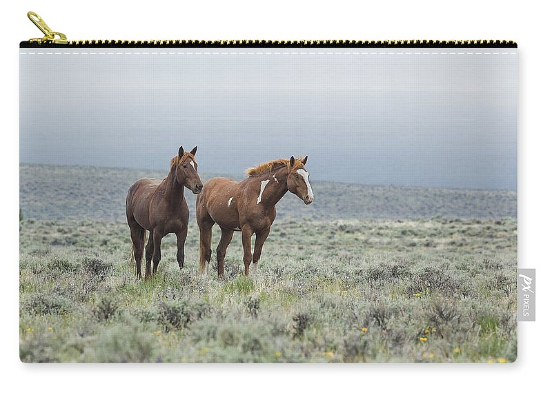 Wild Horse Carry-all Pouch featuring the photograph Wild Horses - Steens 1 Rw by Belinda Greb