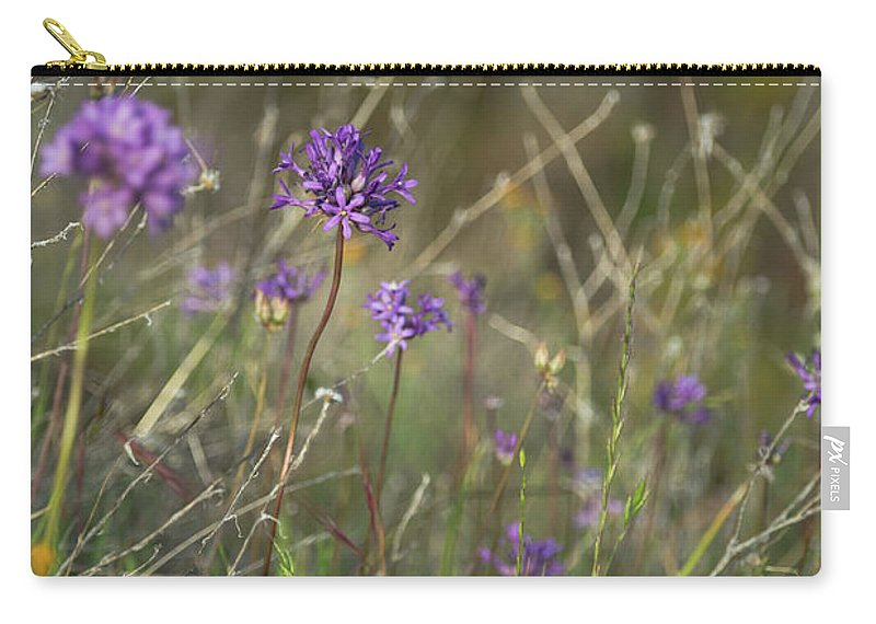 2013 Carry-all Pouch featuring the photograph Wild Hyacinth At Sunset by Curtis Pope