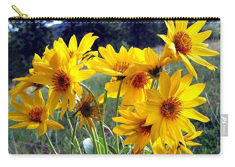 Sunflowers Carry-all Pouch featuring the photograph Wild Okanagan Sunflowers by Will Borden