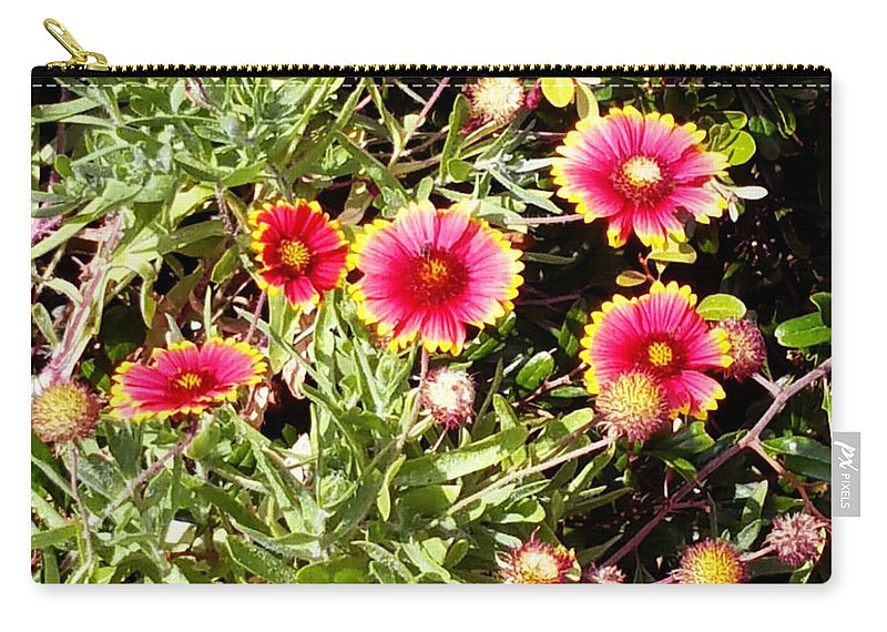 Shannon Carry-all Pouch featuring the photograph Wild Pink Beauty by Shannon Sears