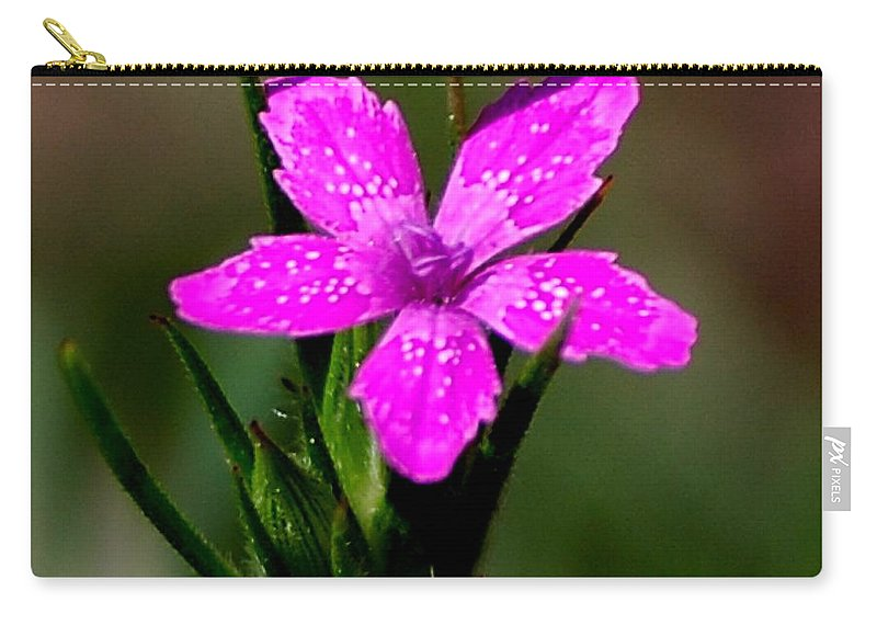 Digital Photo Carry-all Pouch featuring the photograph Wild Pink by David Lane