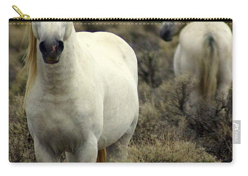 Wild Horses Carry-all Pouch featuring the photograph Wild Stallion by Marty Koch