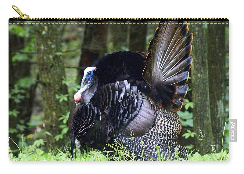 Wild Turkey Carry-all Pouch featuring the photograph Wild Turkey 1 by Marty Koch