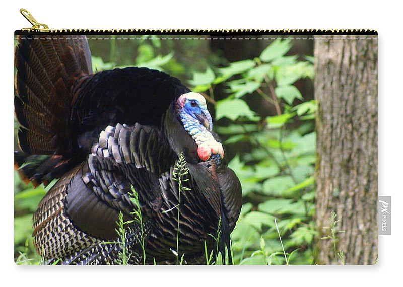 Wild Turkey Carry-all Pouch featuring the photograph Wild Turkey 2 by Marty Koch