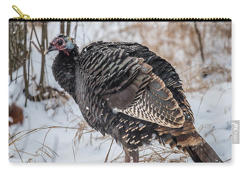 Wild Turkey Not The Whiskey Carry-all Pouch featuring the photograph Wild Turkey Not The Whiskey by Paul Freidlund