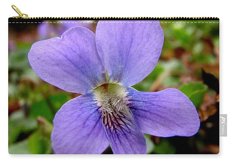 Violet Carry-all Pouch featuring the photograph Wild Violet 1 by J M Farris Photography