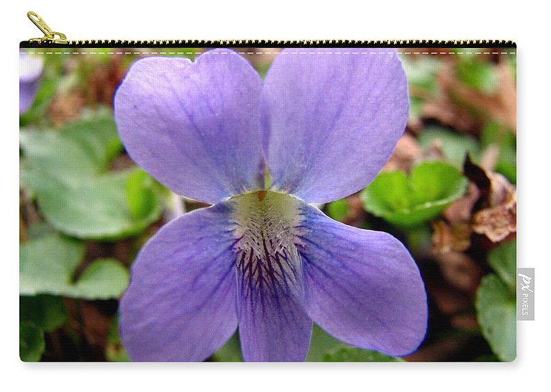 Violet Carry-all Pouch featuring the photograph Wild Violet 2 by J M Farris Photography