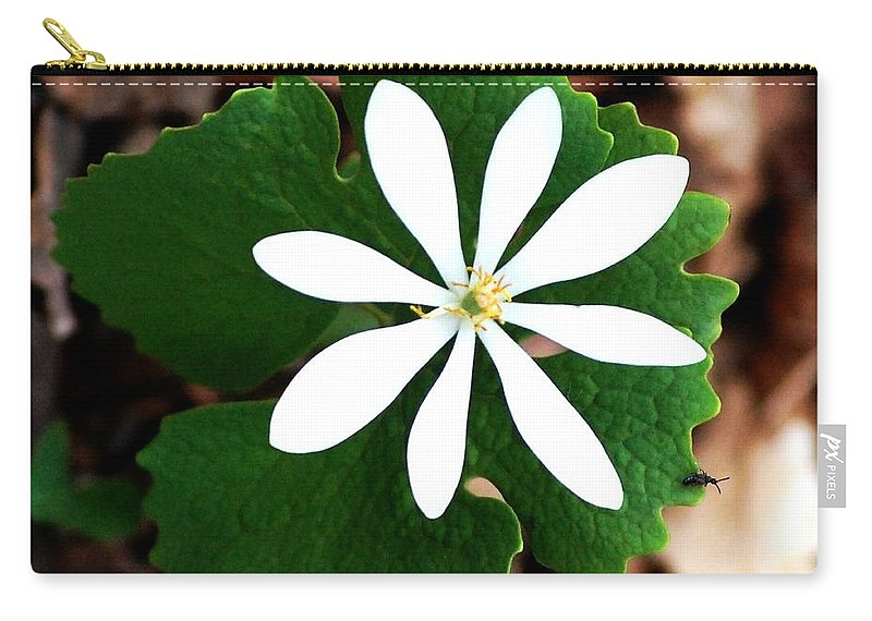 Digital Photo Carry-all Pouch featuring the photograph Wild White by David Lane