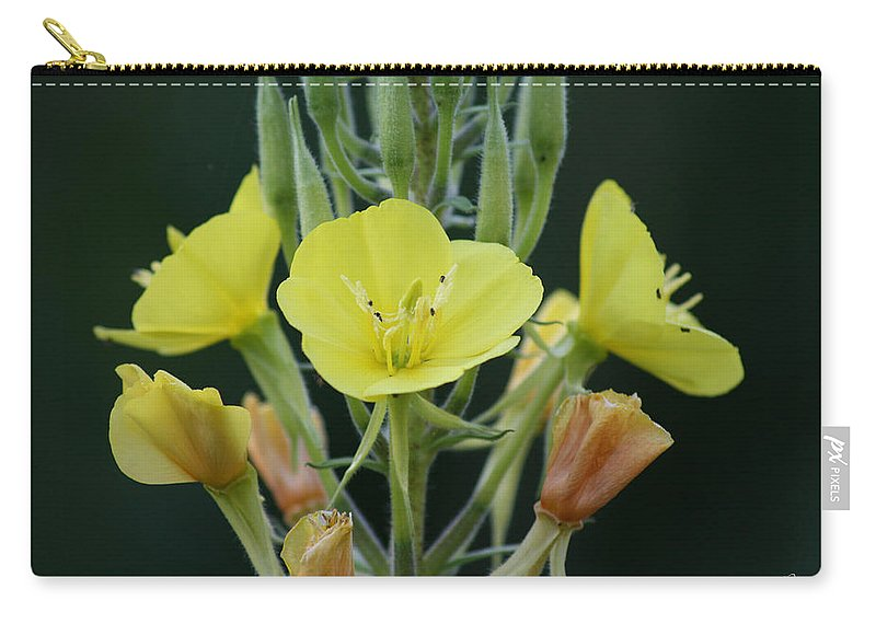 Flower Wild Yellow Green Orange Plants Garden Digital Carry-all Pouch featuring the photograph Wild Yellow by Andrea Lawrence