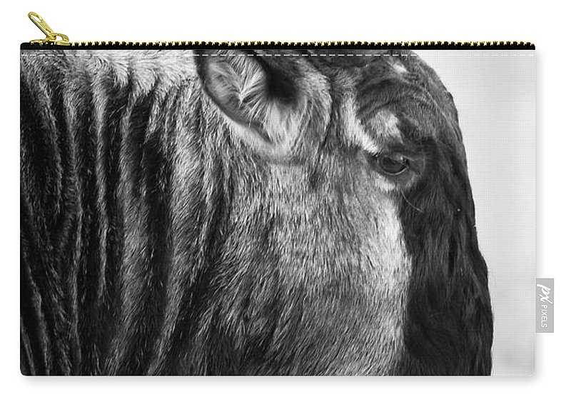 3scape Photos Carry-all Pouch featuring the photograph Wildebeest by Adam Romanowicz