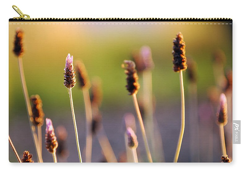 Nature Carry-all Pouch featuring the photograph Wildflower 2 by Jill Reger