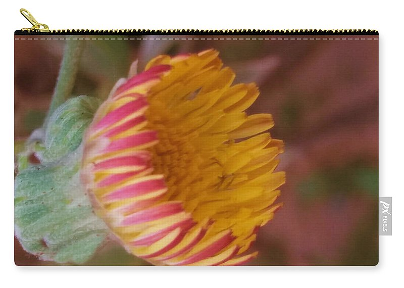 Wildflower Carry-all Pouch featuring the photograph Wildflower by Nilu Mishra