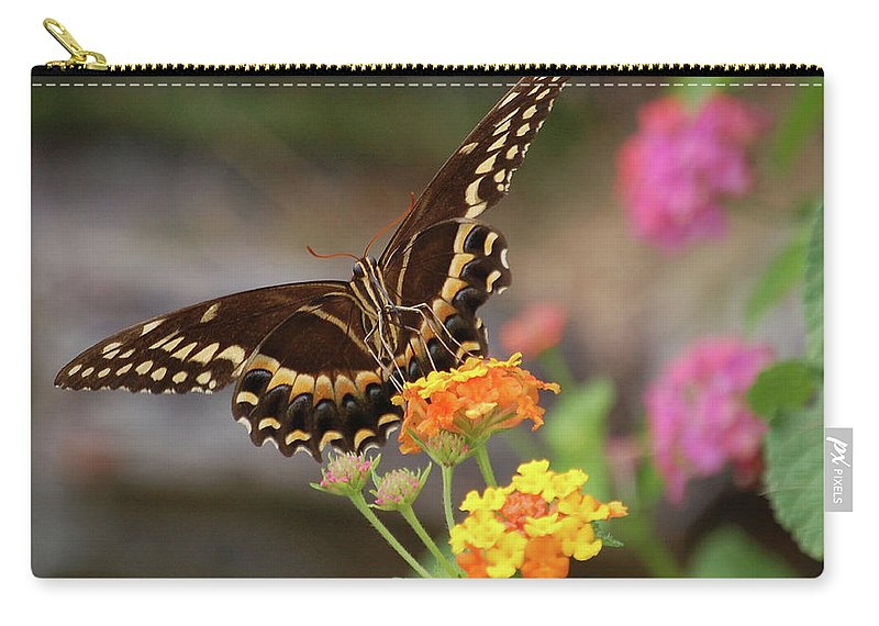 Butterfly Carry-all Pouch featuring the digital art Wildflower Swallowtail by DigiArt Diaries by Vicky B Fuller