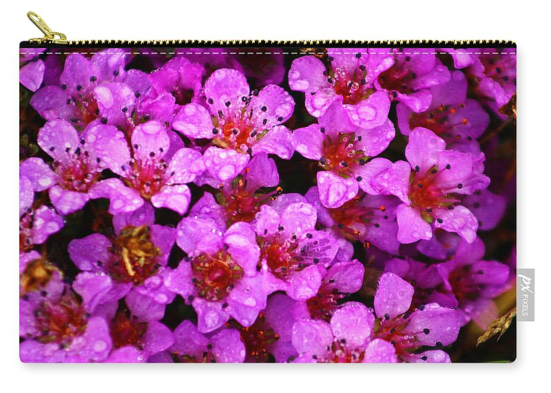 Wild Flowers Carry-all Pouch featuring the photograph Wildflowers by Anthony Jones