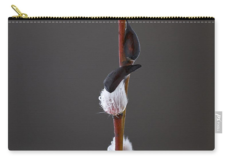 Lehtokukka Carry-all Pouch featuring the photograph Willow Catkins 2 by Jouko Lehto