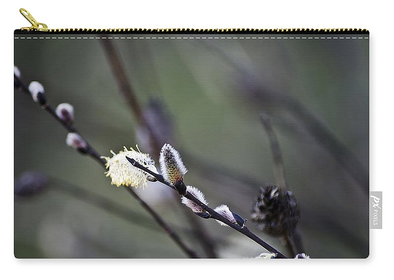 Usa Carry-all Pouch featuring the photograph Willow Stages by LeeAnn McLaneGoetz McLaneGoetzStudioLLCcom