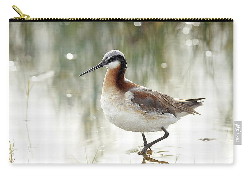 Birds Carry-all Pouch featuring the photograph Wilson's Phalarope by Doug Herr