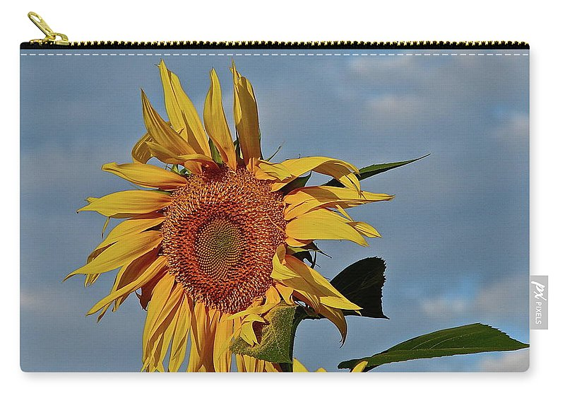 Flower Carry-all Pouch featuring the photograph Windblown by Diana Hatcher