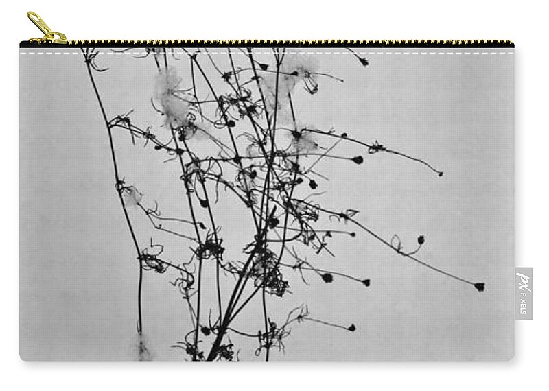Windblown Carry-all Pouch featuring the photograph Windblown In The Snow by Douglas Barnett
