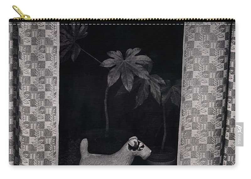 Photograph Carry-all Pouch featuring the photograph Window Scene by Charles Stuart