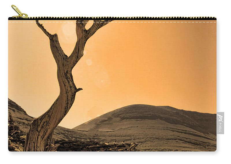 Tree Carry-all Pouch featuring the photograph Windswept by Shari Jardina