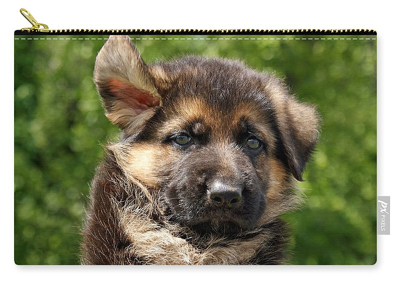 German Shepherd Carry-all Pouch featuring the photograph Windy Day by Sandy Keeton