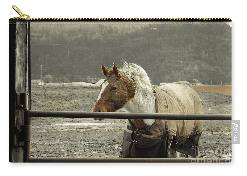 Clay Carry-all Pouch featuring the photograph Windy In Mane by Clayton Bruster
