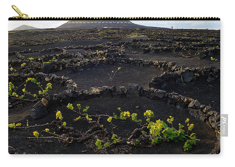 Lehtokukka Carry-all Pouch featuring the photograph Wine 1 by Jouko Lehto