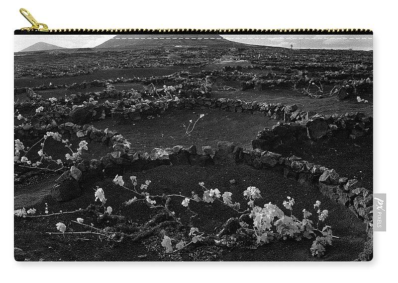 Lehtokukka Carry-all Pouch featuring the photograph Wine 2 Bw by Jouko Lehto