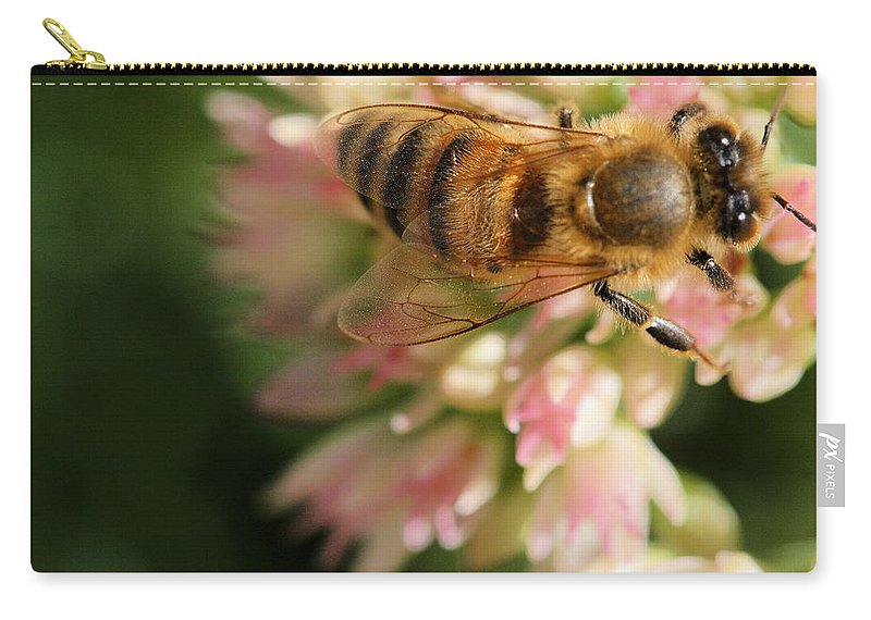 Bee Carry-all Pouch featuring the photograph Wing And A Prayer by Angela Rath