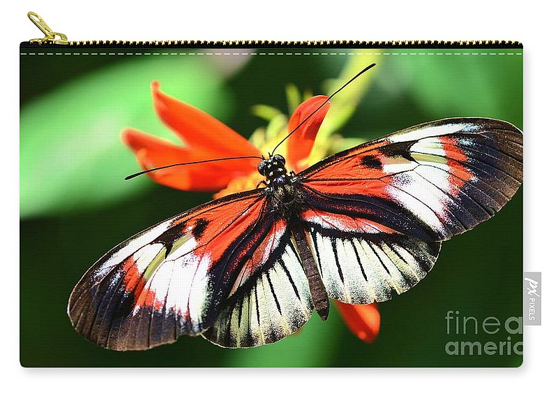 Wings Carry-all Pouch featuring the photograph Wings 9 by Lisa Renee Ludlum