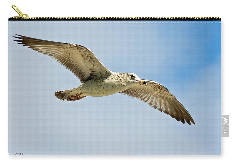 Christopher Holmes Photography Carry-all Pouch featuring the photograph Wings Aloft by Christopher Holmes