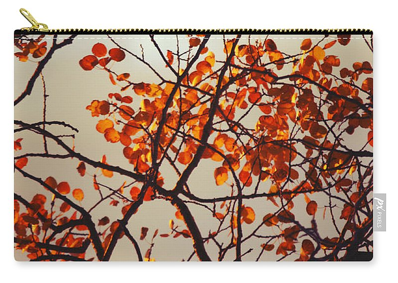 Fall Carry-all Pouch featuring the photograph Wings Always Sing by The Artist Project