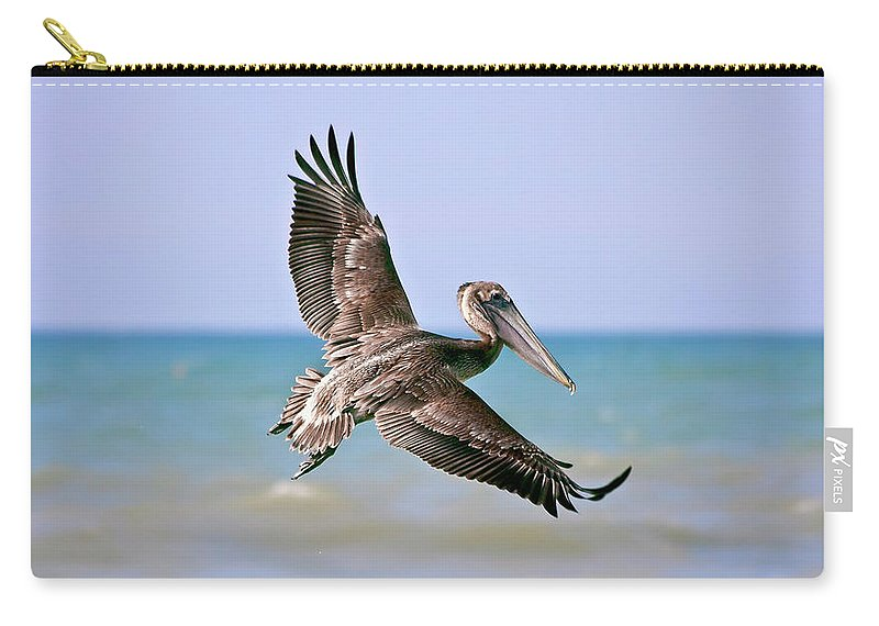 Wing Carry-all Pouch featuring the photograph Wingspan by Evelina Kremsdorf