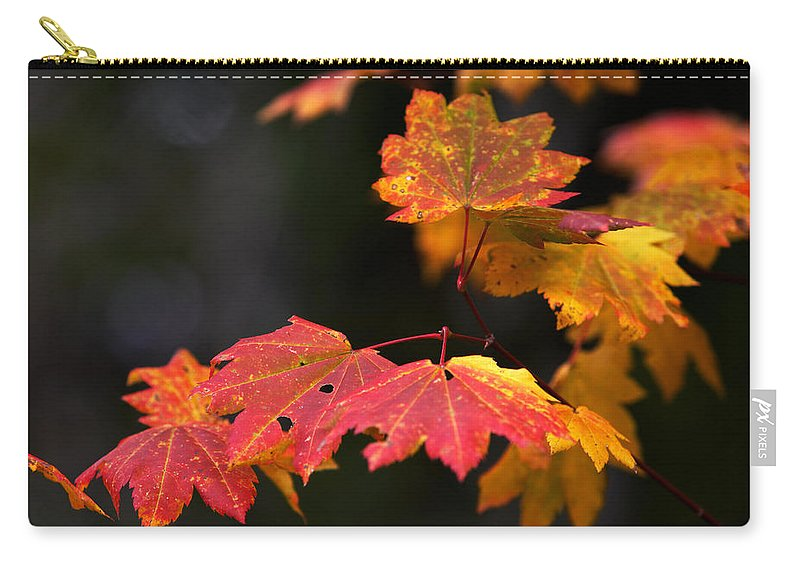 Floral Carry-all Pouch featuring the photograph Winter Approaches... by Randall Ingalls
