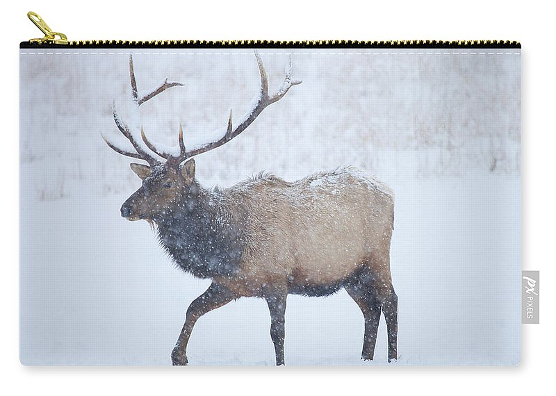 Elk Carry-all Pouch featuring the photograph Winter Bull by Mike Dawson