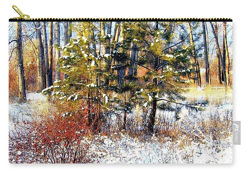 Winter Carry-all Pouch featuring the photograph Winter Calm by Will Borden