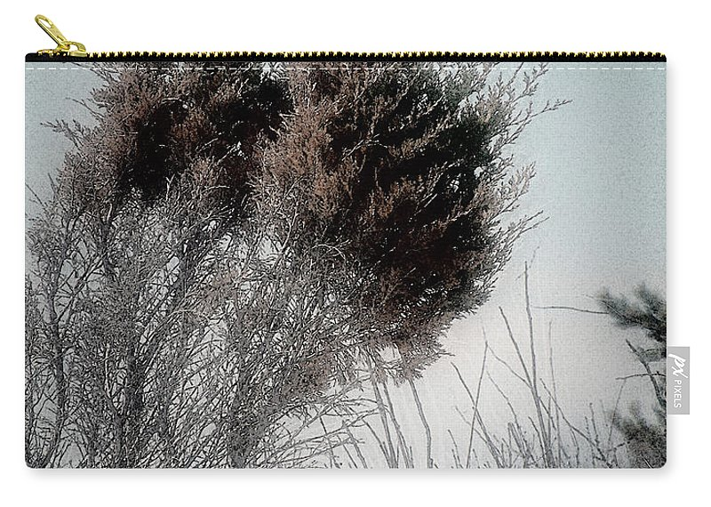 Beach Carry-all Pouch featuring the painting Winter Cedar by RC DeWinter