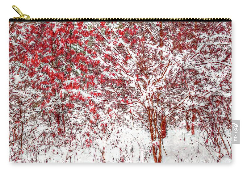 Art Carry-all Pouch featuring the digital art Winter Color by Randy Steele