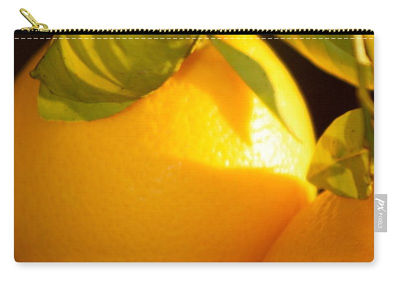 Fruit Carry-all Pouch featuring the photograph Winter Fruit by Nadine Rippelmeyer